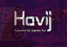 Havij Pro 1.17 Crack + Full Injection 2021 Free Download